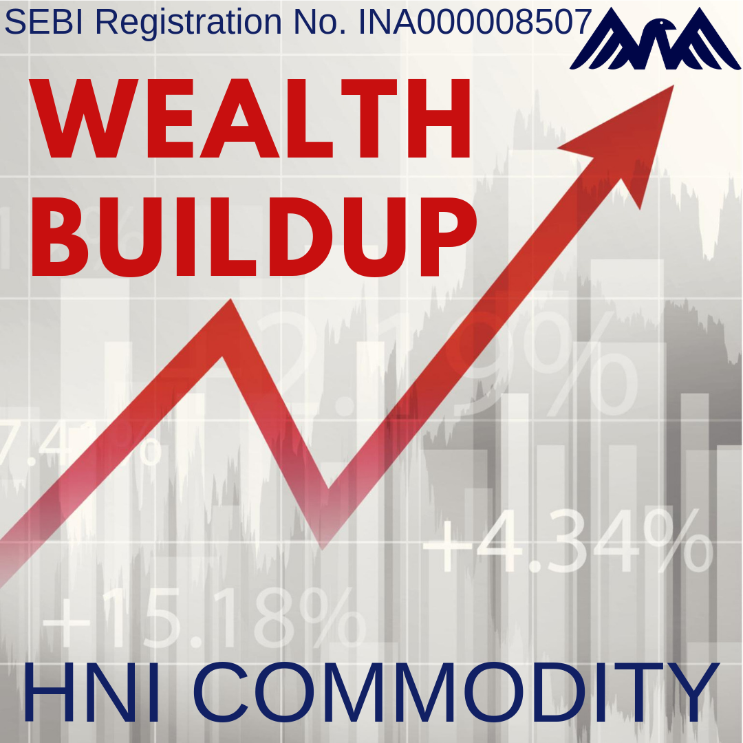 HNI COMMODITY COMBO : Wealthbuildup